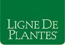 Ligne des Plantes